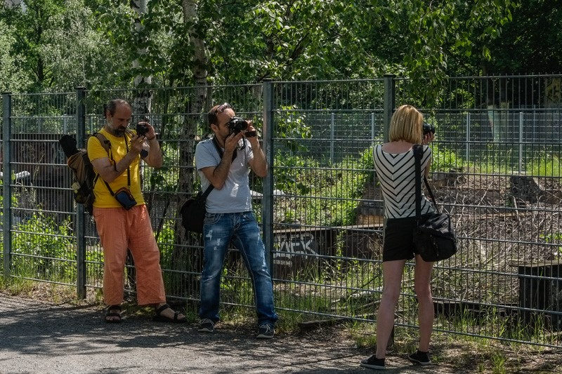 fotografieren im Gleisdreieckpark